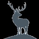 icon-saf